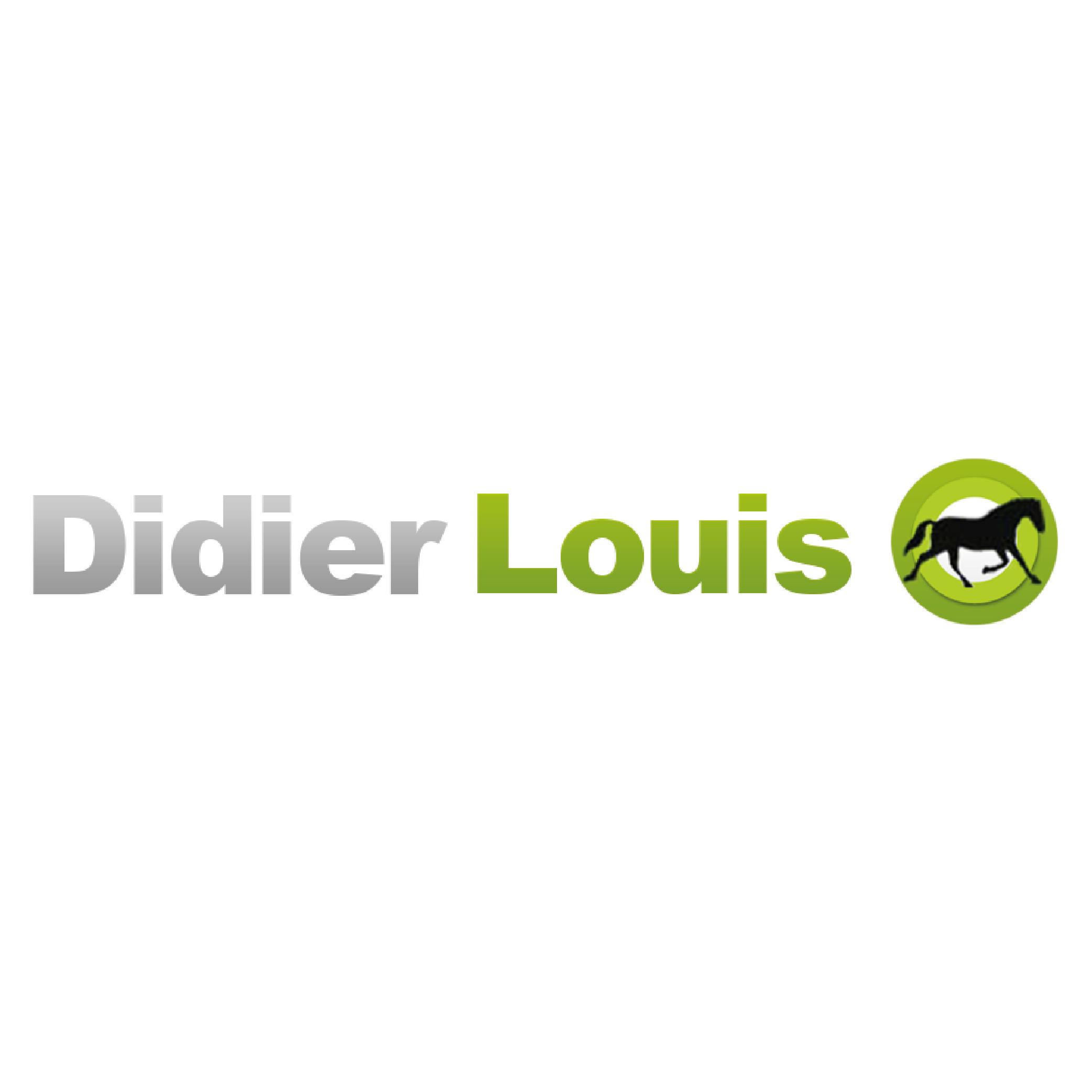 Didier LOUIS